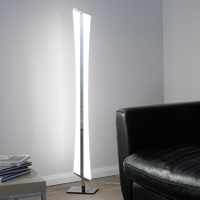 Paul Neuhaus Riller Warm White & RGB 2x 16.2W LED Floor Lamp | LV2002.0001