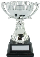 20cm Silver Metal Cup with Centre on Black Ma
