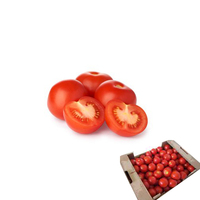 Tomatoes (Loose)-(57/67mm-6kg)