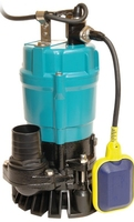 "Water Pump Submersible 2"" 110v SPA500"