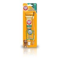 Arm & Hammer Toothbrush Set x 1