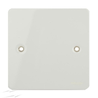 Flat Plate WHITE 1G BLANK PLATE LV0701.0618