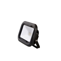 Robus Remy 10W LED Floodlight IP65 4000k