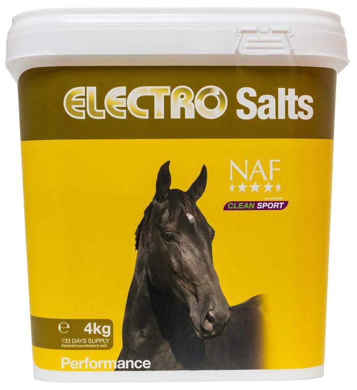 NAF Electro Salts 4kg