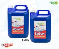 BIG DOM! THICK BLEACH 2x5ltr