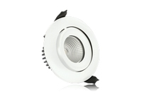 6w IP65 Fire Rated Tiltable Downlight 3000K