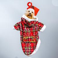 Christmas Dog Suit