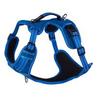Rogz Explore Harness - Medium Blue x 1