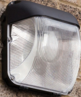 GLADIATOR 70W SONE WALLPAC CW LAMP