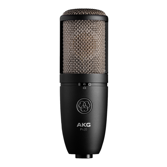 AKG Perception P420 Condenser Mic (St)