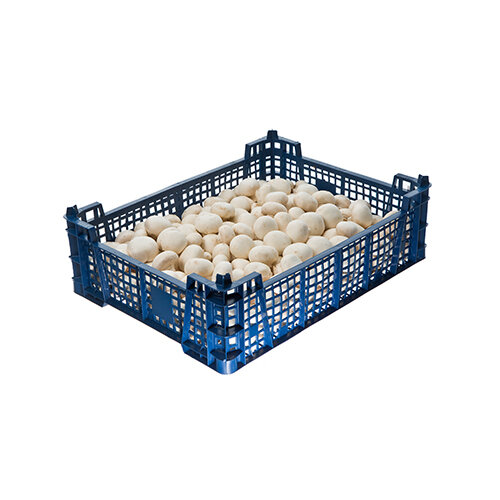 Fresh Cup Mushrooms 2.27kg