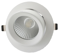 30W LED Circular Wallwasher Shoplight