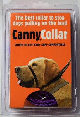 Canny Collar Size 1 Purple x 1