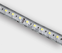 ONE Light One Light LED Rope Light 14.4w per metre Daylight IP65