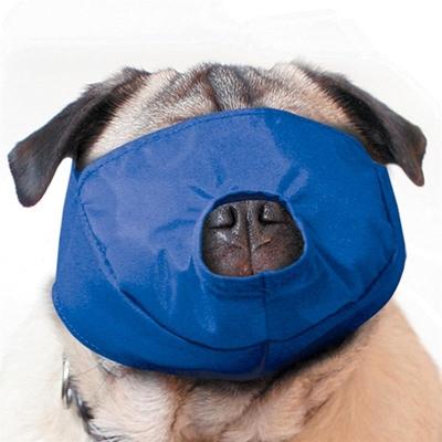 Quick Muzzle Pug