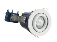 Adjustable 240V GU10 Fire Rated Downlight White