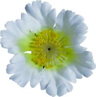 Artificial Flower Christmas Rose - White