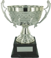 30cm Silver Chrome Cup on Black Base