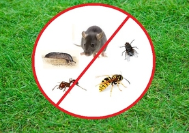 Pest & Weed Control