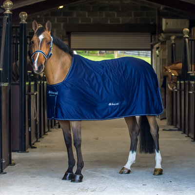 All-purpose & Cooler Rugs