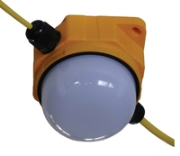BRITICENT 20M LED INTEGRATED FESTOON 7x10W