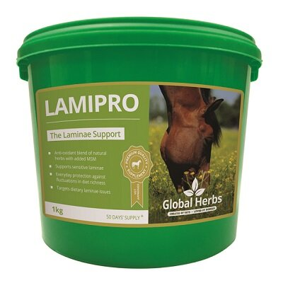 Global Herbs LamiPro Supplement 1kg