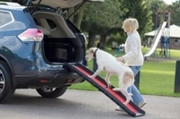 Henry Wag Lightweight Folding Dog Ramp x 1