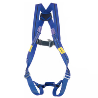 Miller Titan 2-Point Harness