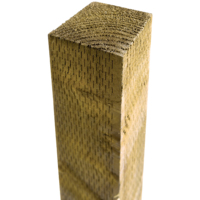 2.7m Incised Post 100x100mm Green Light Brown