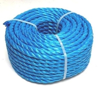 BLUE ROPE 8MM  X 220MTR