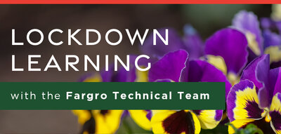 Lockdown Learning with the Fargro Technical Team