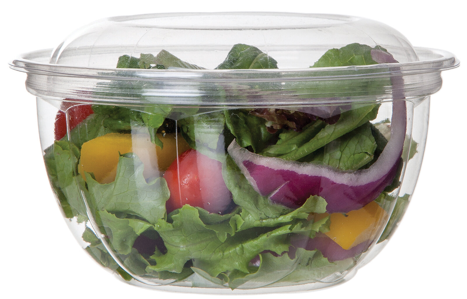 Biodegradable Salad Bowls