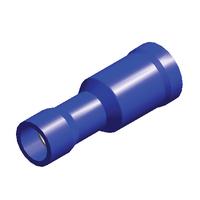 Blue Term Socket