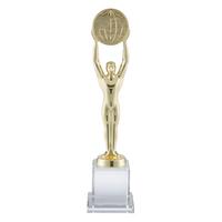 30cm Crystal & Gold Metal Award