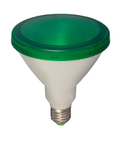 15W LED PAR 38 External - ES, Green | LV1603.0099