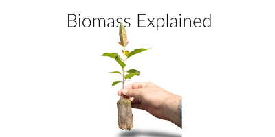 Guide: What Is A Biomass Boiler - Grant Engineering