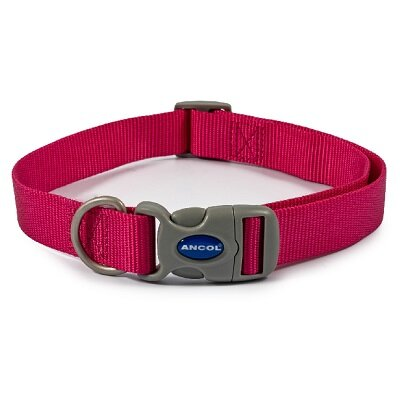 Ancol Raspberry Adjustable Nylon Dog Collar 45 - 70cm