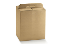 BOX CARRIER W/HANDLE 350X330X250MM GOLD disc