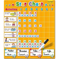 Large magnetic star chart