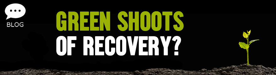 Green Shoots of Recovery?
