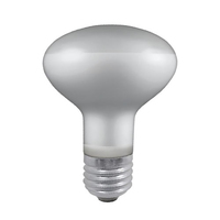 PRO R80 100W Reflector Lamp