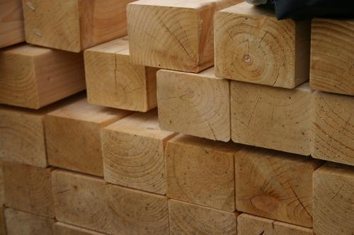Timber - Goodwins