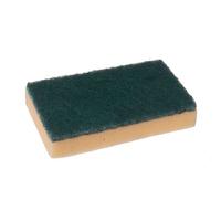 Large Sponge Scourer (WT832/1)