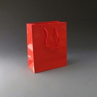 Small Red Luxury Bag