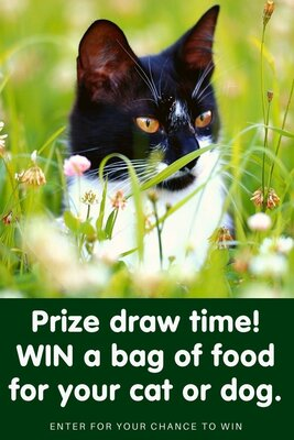 Win one of our delicious diets for your fussy felines or discerning dogs!