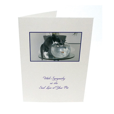Purfect Sympathy Cards 5pk - Style  5