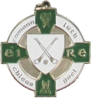 34mm Hurling Medal (Silver / Green)