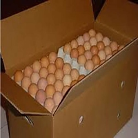 Eggs Large (Box)-(360)