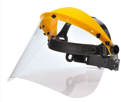 Browguard with Clear Visor