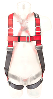 Protecta Pro Harness